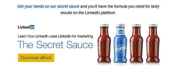 LinkedIn does a great job of using a memorable image to promote their eBook.