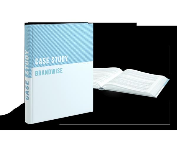 Brandwise Case Study